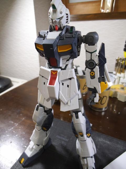 DSCF0011 (480x640)