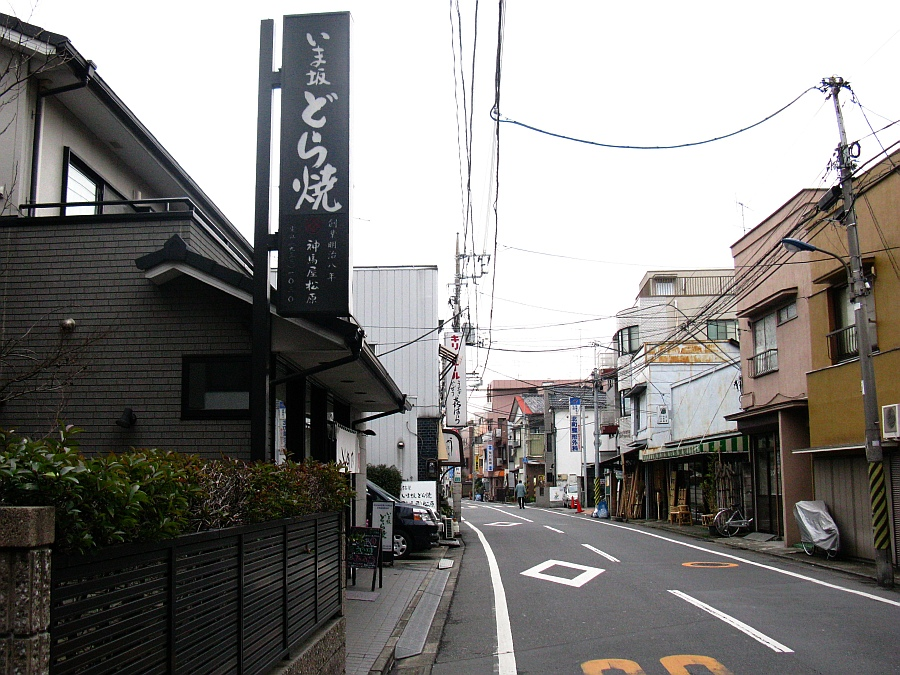 2010_02_17053.jpg