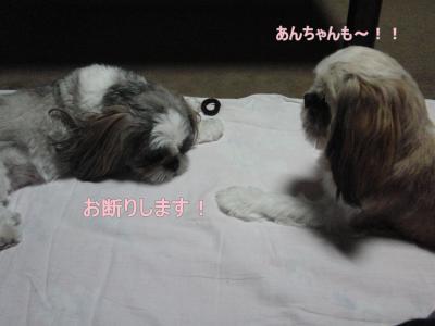 2010_0710_224038-CIMG1101_convert_20100712235119.jpg