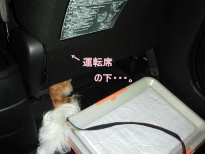 2010_0713_190841-CIMG1355_convert_20100714213443.jpg