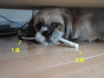 2010_0819_175217-CIMG2784_convert_20100903232814.jpg