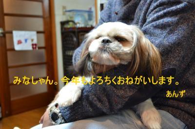 2011_0101_194231-DSC_0750_convert_20110102014341.jpg