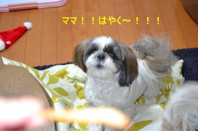 2011_0118_203537-DSC_0219_convert_20110118214824.jpg