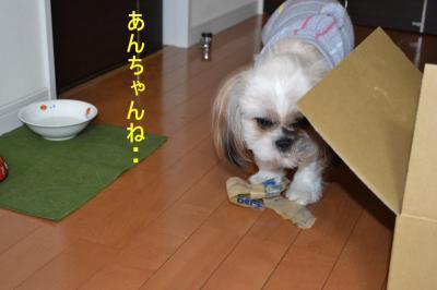 2011_0120_183625-DSC_0267_convert_20110121225556.jpg