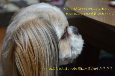 2011_0608_201306-DSC_0261_convert_20110615234855.jpg