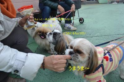 2012_0304_131724-DSC_0237_convert_20120308192321.jpg
