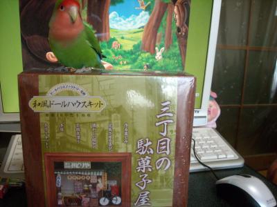 DSCN2405_convert_20111220105124.jpg