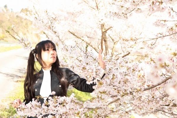 散りゆく桜に思いを
