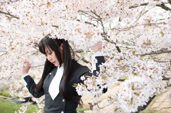 去年の桜撮影よりぺた1