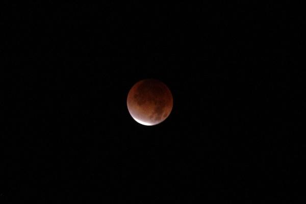 月食の月撮ってみた