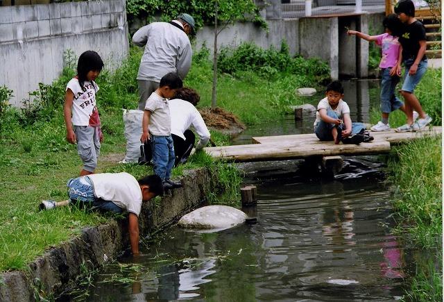 茨田樋で水遊び