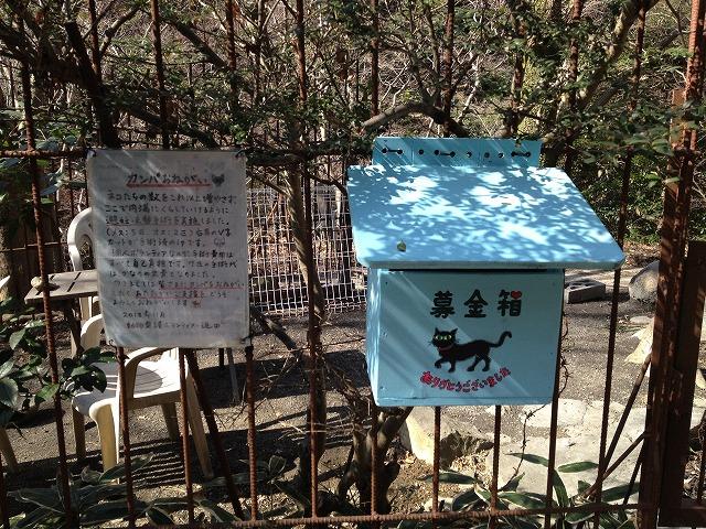 紅葉茶屋ネコ対策の募金箱