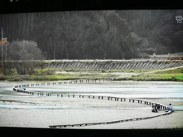 P1420528韓国ムソムマウル(무섬마을)沈下橋です