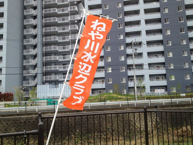 4月7日つづき②幸町公園清掃ノボリ