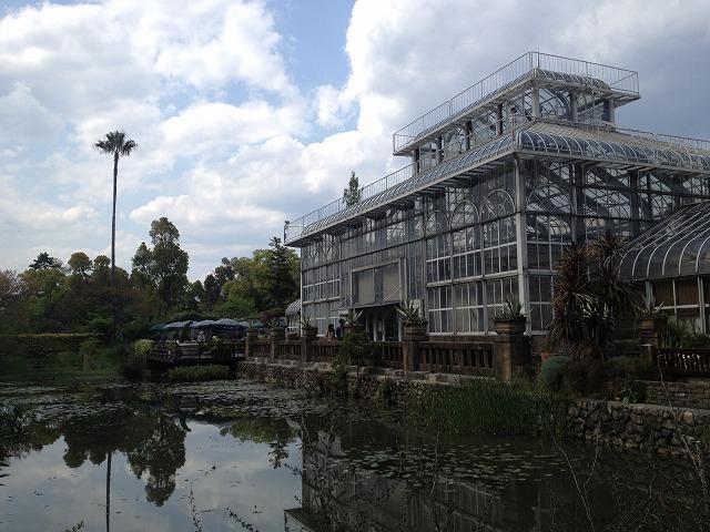 IMG_4343●温室は日本の温室のモデルになったそうです