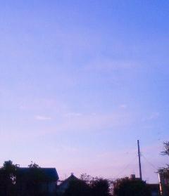 NEC_1776 ピンクの空2