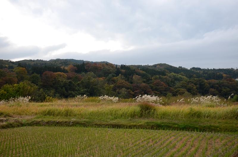 20141102 onsen7