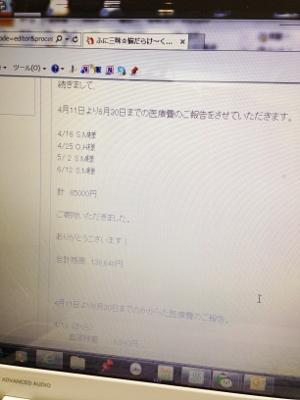 IMG_0090 (300x400)