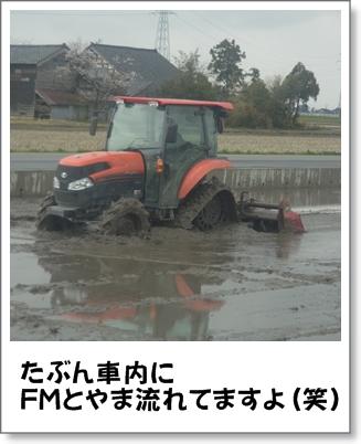 20130411a.jpg