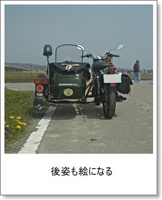 20130416c.jpg