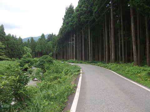 hunagawa0623-2.jpg