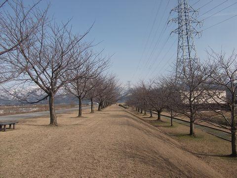 kurobegawa0309-5.jpg