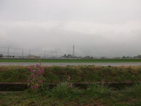 tachiaoisora0615-1.jpg