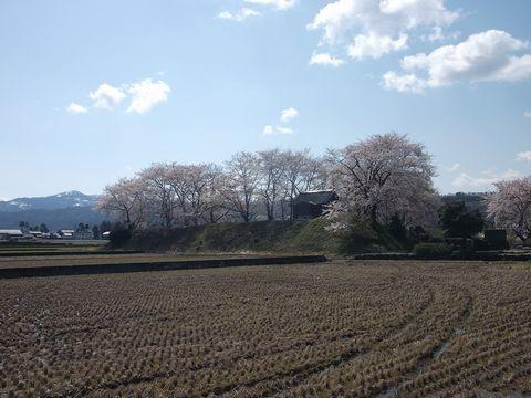 wakaguri0413-1.jpg