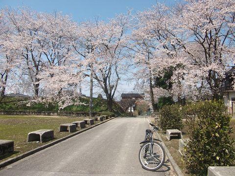 wakaguri0413-5.jpg