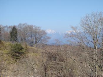 茶臼山からの早春の南アルプス
