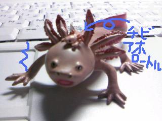 gazou604.png
