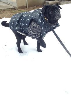雪苦手だなぁ~