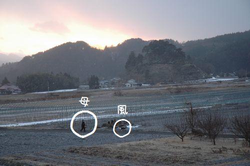 DSC_0146-2.jpg