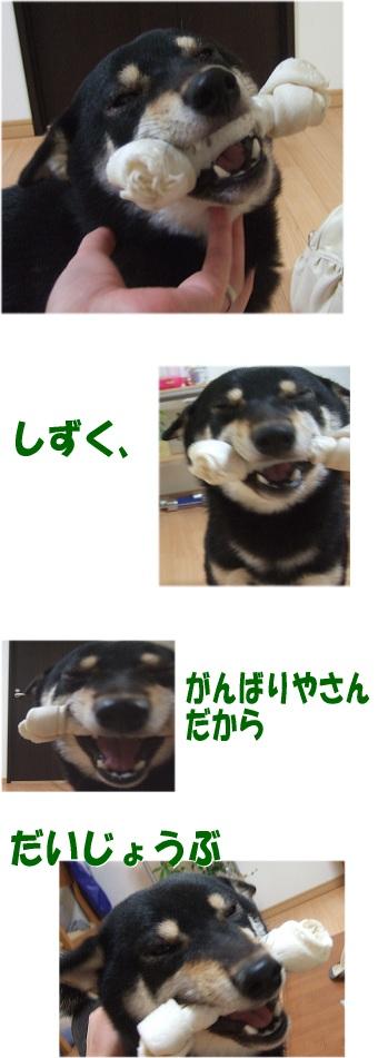 100513-8.jpg