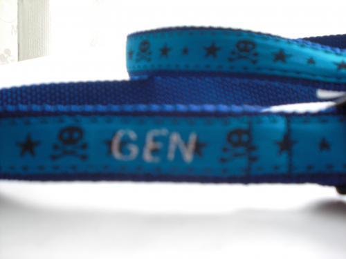 2010_0619_164419-CIMG2260_convert_20100619212243[1]