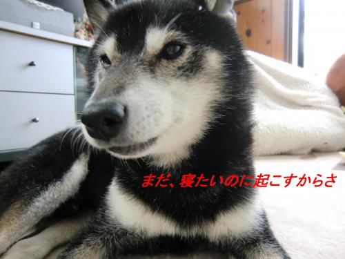 蟇昴◆縺Юconvert_20101124071138[1]