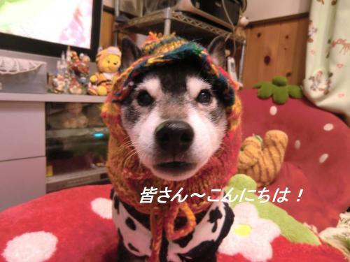 蟶ス蟄撰シ狙convert_20110130075543[1]
