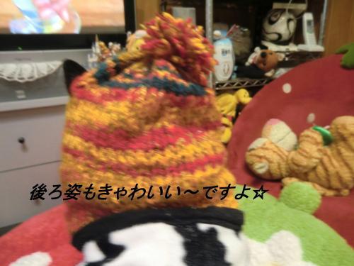 蟶ス蟄撰シ棒convert_20110130080155[1]