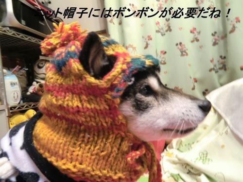 蟶ス蟄撰シ農convert_20110130075819[1]