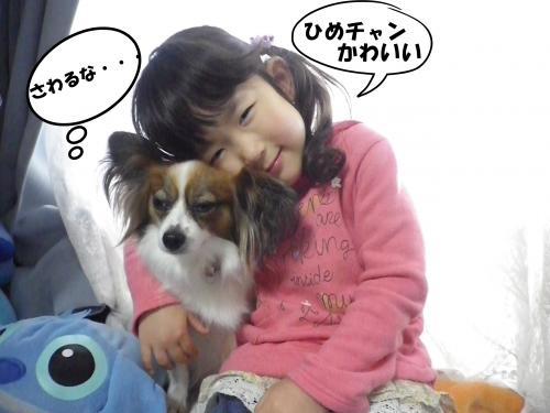 2013-04-27-1+013_convert_20130428101459.jpg