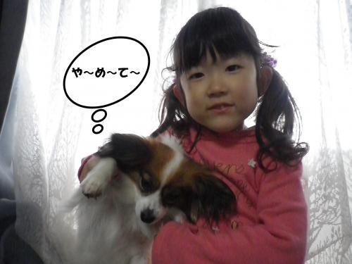 2013-04-27-1+022_convert_20130428101524.jpg