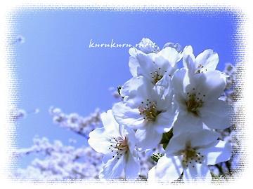 2007_0101_000110-PIC_02031.jpg