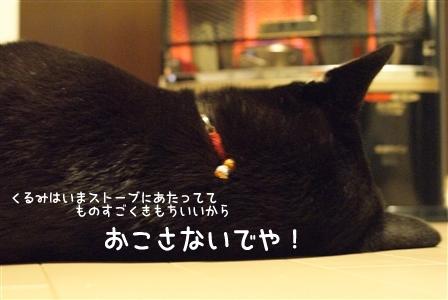 DSC00387_Rく