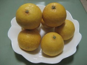 オレンジ?