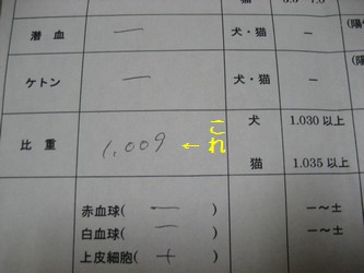 検査結果1