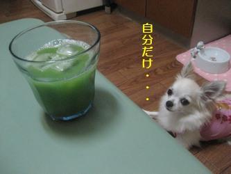 ゴーヤジュース2