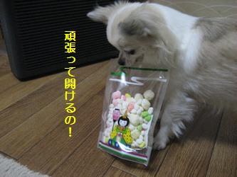 開けるの!