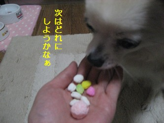 雛あられ5