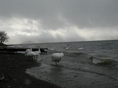 11月8日の屈斜路湖周辺