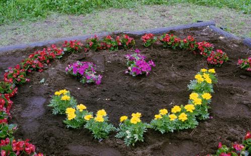 虹つば花壇